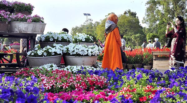 APP81-28 LAHORE: March 28 - Visitor lady posing for a photo while standing between the displayed flower pots during the preparation of annual flower show will start on 29th of March at Jillani Park (Race Course Park). APP photo by Mustafa Lashari