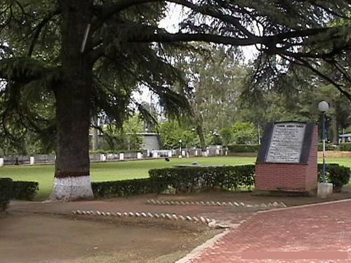 lady garden - Abbottabad