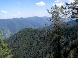 thandiyani Abbottabad