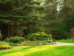 Japanese park Islamabad