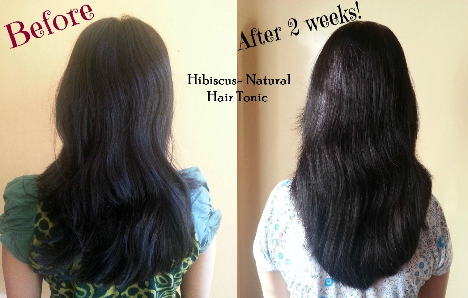 hibiscus-natural-hair-tonic