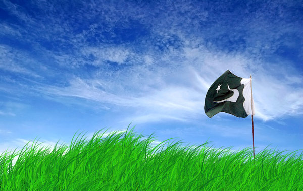 Pakistani Flag dp for Facebook 5
