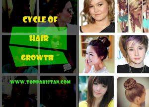 Cycle of Hair Growth and Loss