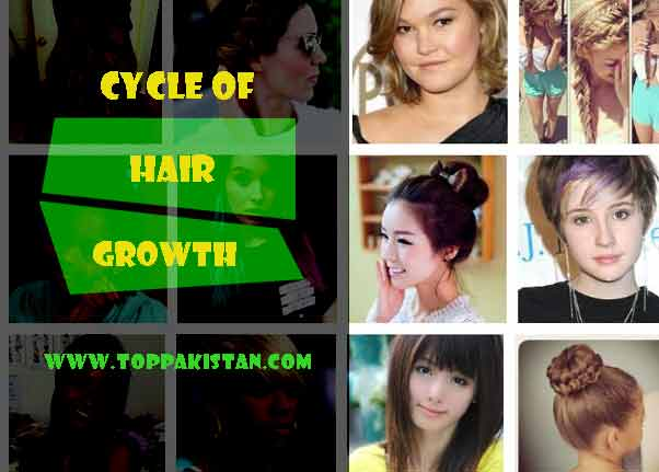 Cycle of Hair Growth and Loss