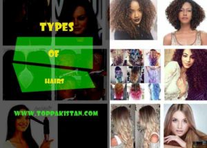 Types of Hairs