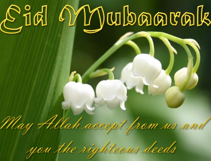 New HD Images For Eid Mubarak 2017